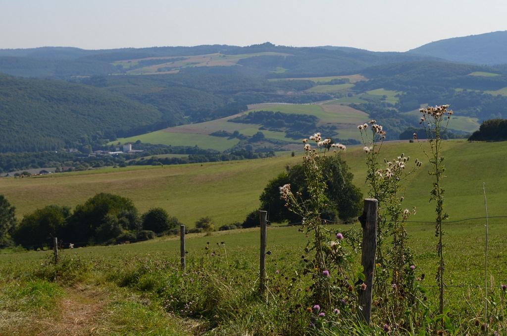 Pfälzer Höhenweg: Heimat wandernd neu erleben