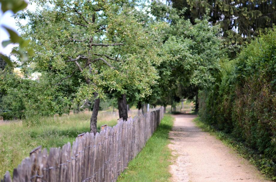 Erholen, begegnen, heilen: Auszeit im Kloster Arenberg